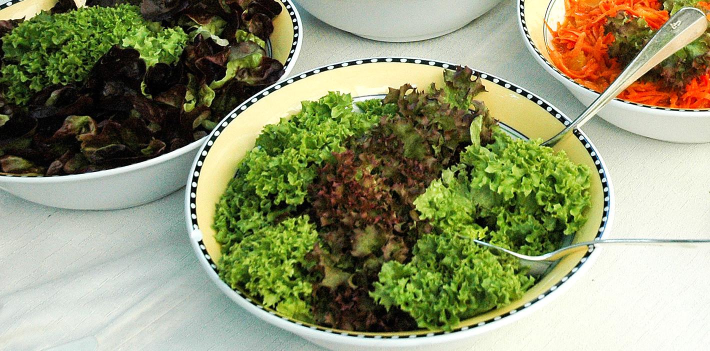 Salat waschen und zubereiten